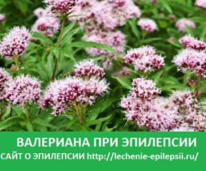 Валериана при эпилепсии